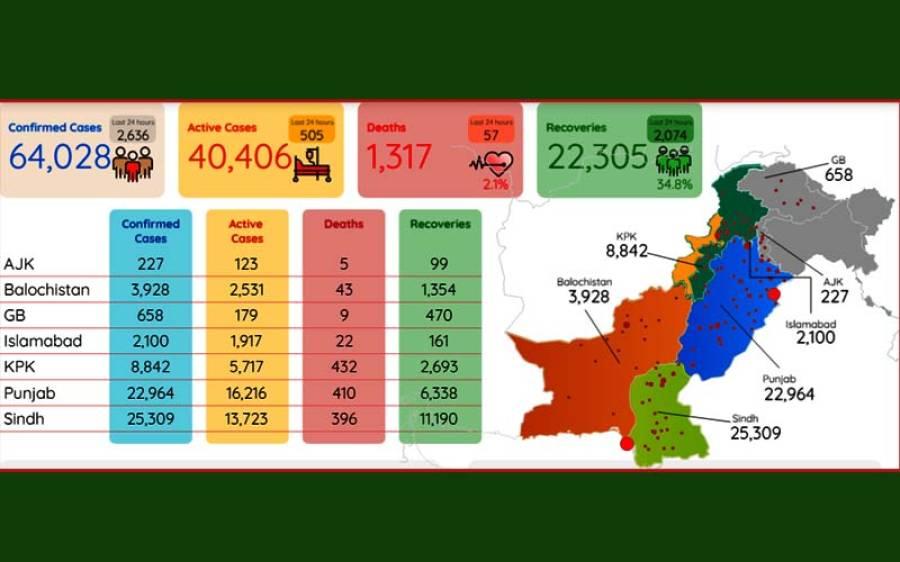 کورونا وائرس، پاکستان میں ایک روز میں سب سے زیادہ کیسز اور اموات ریکارڈ ، پریشان کن خبر