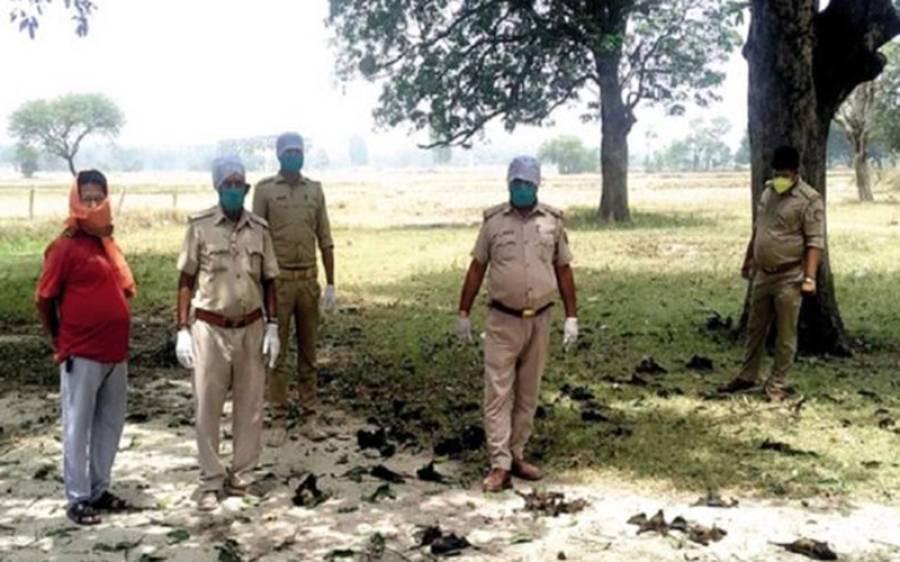 بھارت میں سینکڑوں چمگادڑیں اچانک مردہ حالت میں آسمان سے گرنے لگیں، وجہ بھی سامنے آگئی