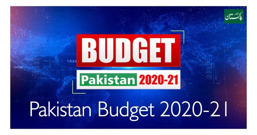 وفاقی کابینہ نے بجٹ تجاویز 21-2020 کی منظوری دے دی