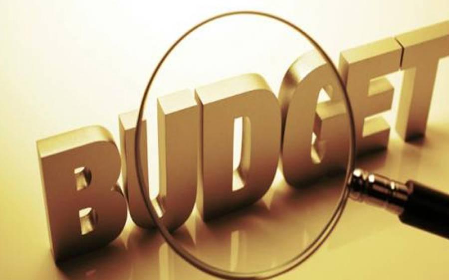 حکومت کے وہ معاشی فیصلے جن کے نتیجے میں مالیاتی استحکام پیدا ہوا، بجٹ تقریر کے دوران دلچسپ انکشاف