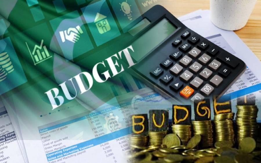 مالی سال 2020-21کے وفاقی بجٹ کے اہم نکات