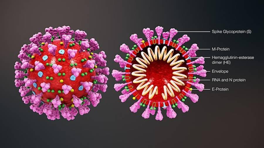 دنیا میں کورونا وائرس کے ایک دن میں ریکارڈ کیسز سامنے آگئے،پریشان کن اعدادوشمار جاری