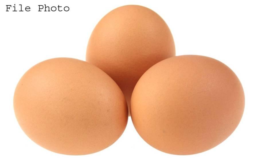 کوئٹہ میں مصنوعی انڈوں کی فروخت کا دعویٰ،7 دکانیں سیل