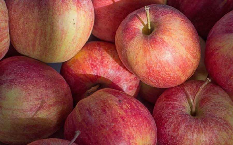 افغانی کے نام پر ایرانی سیب درآمد کرنے پر 22 امپورٹر، کسٹم ایجنٹ گرفتار، قومی خزانے کو 34 کروڑ روپے کا ٹیکہ