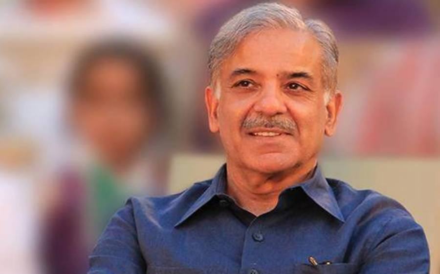 شہباز شریف بھی وزیر اعظم کے ہم زبان ہوگئے،یوم استحصال کشمیر پر اقوام متحدہ سے بڑا مطالبہ کردیا