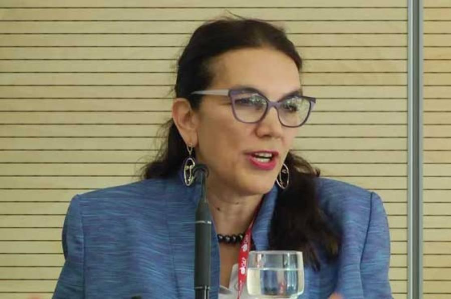 پاکستان میں یورپی یونین کی سفیر کا وزیراعظم کی شجر کاری مہم میں حصہ لینے کا اعلان