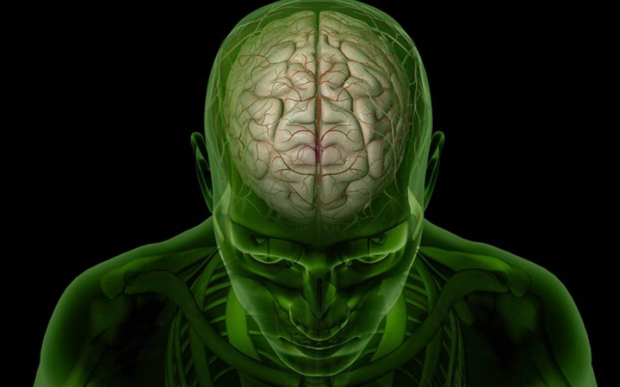 23 سالہ آدمی کے دماغ میں 17 سال سے موجود کیڑا ڈاکٹرز نے نکال لیا، لیکن یہ اندر کیسے گیا تھا؟ جان کر آپ بھی یہ غلطی نہ کریں گے
