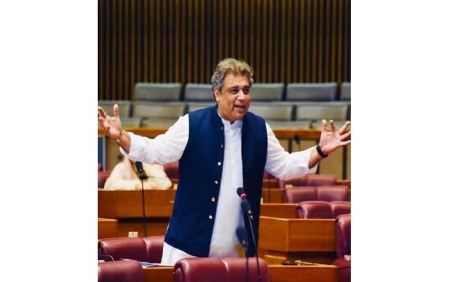 پیپلز پارٹی 12 سال سے سندھ میں لوٹ مار کرتی آرہی ہے, علی زیدی