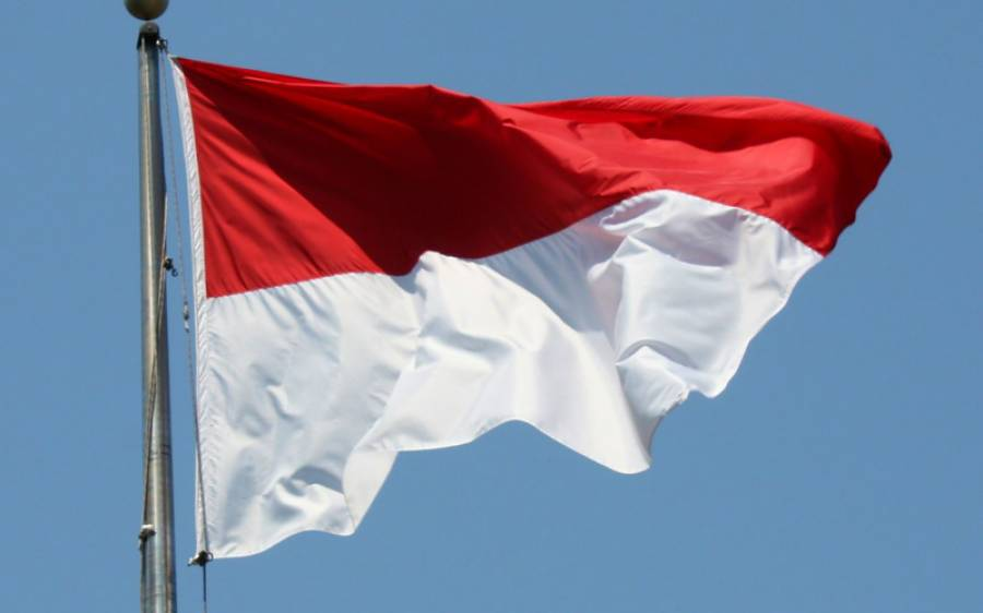 انڈونیشیا کی ایئر لائن کا پاکستان کے لیے فضائی آپریشن شروع کرنے کا فیصلہ، اجازت نامہ جاری