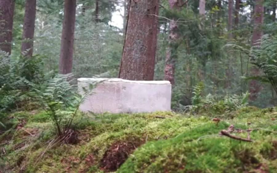 وہ تابوت جس میں دفن ہوکر آپ دنیا والوں کا بڑا فائدہ کرسکتے ہیں