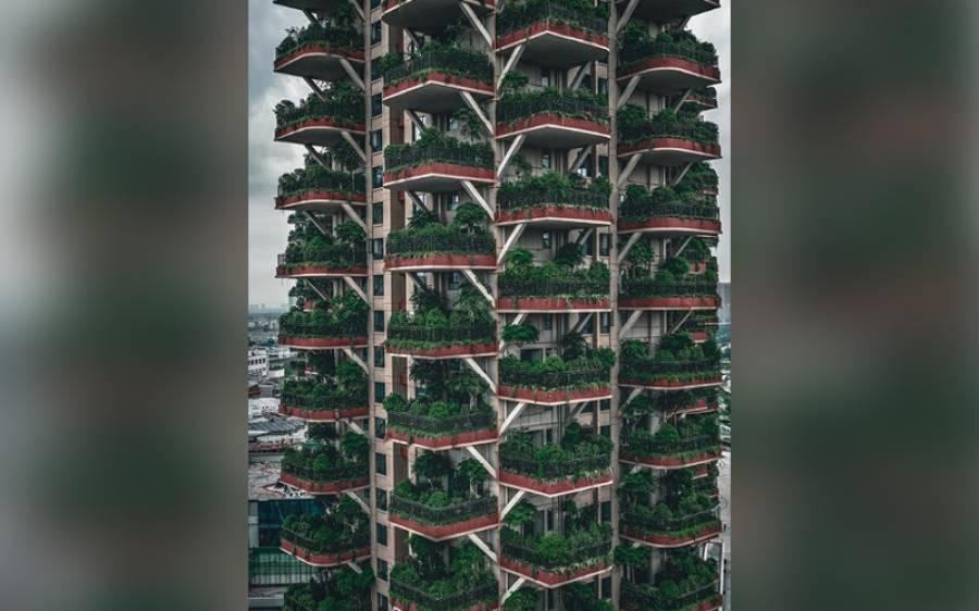 شہر کو ہرا بھرا بنانے کے لیے چین میں یہ عمارتیں متعارف کروائی گئیں، لیکن کچھ عرصے بعد ہی لوگ ان میں رہنے سے کیوں بھاگ گئے؟ ایسا مسئلہ سامنے آگیا جس کے بارے میں کسی نے نہ سوچا تھا