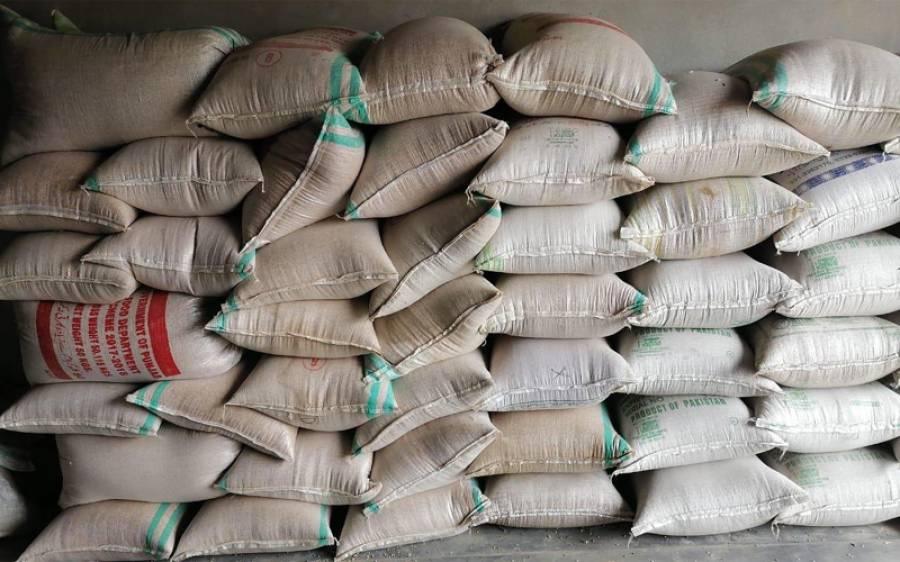 سندھ کابینہ نے 100 کلو گندم کی سرکاری قیمت مقرر کرنے کی منظوری دے دی
