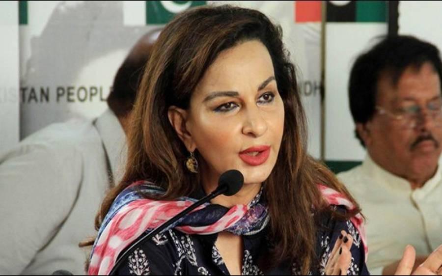 آصف زرداری کے وارنٹ گرفتاری جاری کرنے کی مذمت ،لگتا ہے حکومت کے ساتھ ساتھ نیب بھی گھبراہٹ کاشکار ہے،شیری رحمان