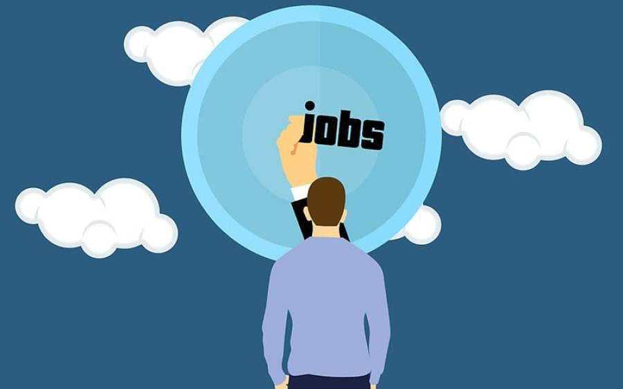 نوکری کے خواہشمند نوجوانوں کے لیے اچھی خبر