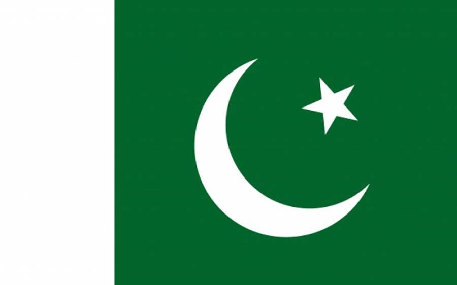 پاکستان نے گستاخانہ خاکوں کی اشاعت اور فرانسیسی صدر کے بیان پر زور دار جواب دیدیا