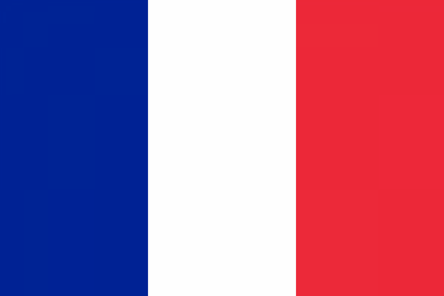 فرانس میں چا قو بردار شخص کا حملہ، تین افراد ہلاک