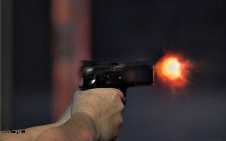 بیٹے نے والدہ اور ملازم کو قتل کرنے کے بعد خودکشی کر لی