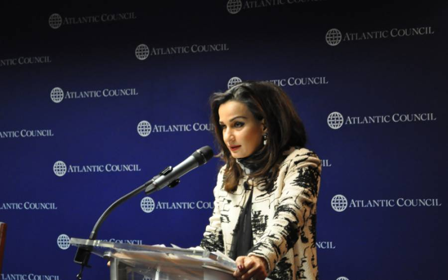 حکومت پر پی ڈی ایم کا بھوت سوار ہے: شیری رحمان