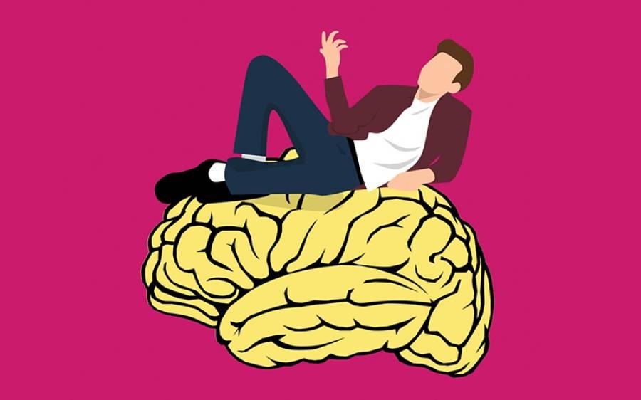 دماغ کو جوان رکھنے کے لیے کون سی غذا کھانی چاہیے، اور کس غذا سے دماغ جلدی بوڑھا ہوجاتا ہے؟ سائنسدانوں نے بتادیا