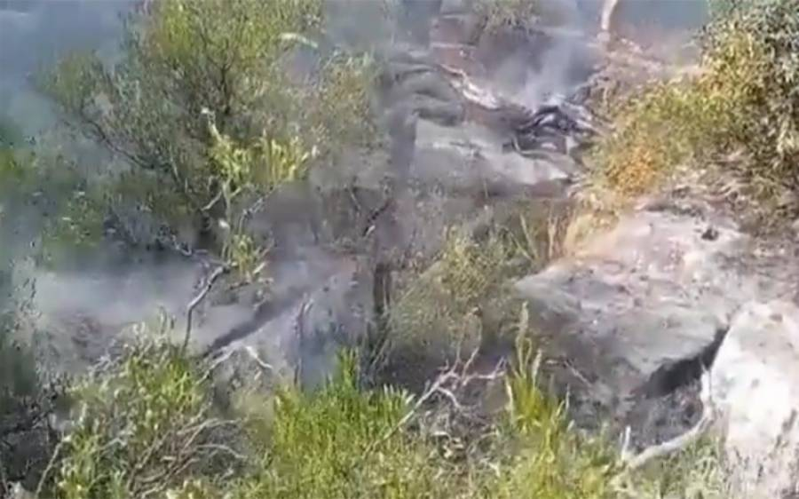 کوہ سلیمان پر 7 کلومیٹر طویل باغات میں آتشزدگی، چلغوزے کے درختوں کو کیسے بچایا گیا؟