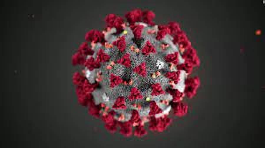 کورونا وائرس مزید 73زندگیاں نگل گیا ، پانچ ہزار 152نئے کیسز رپورٹ