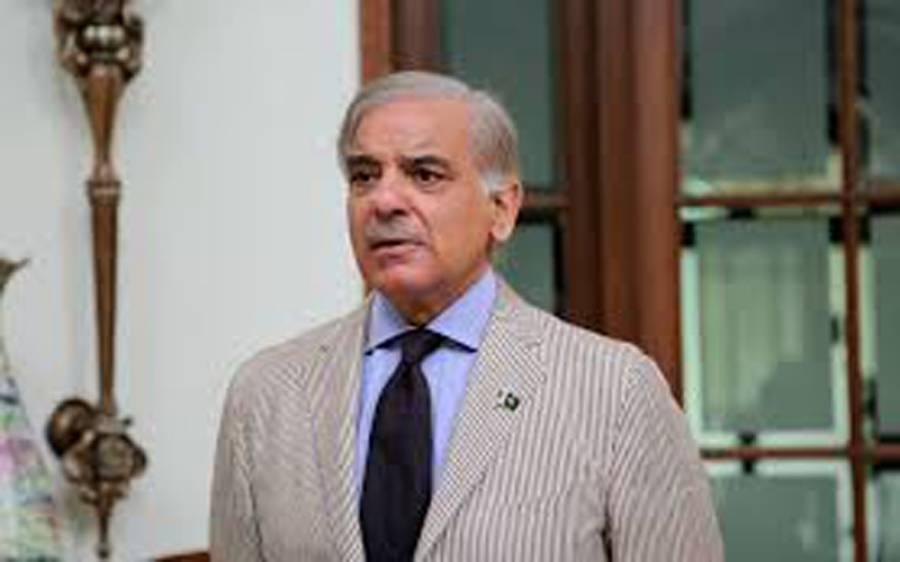 شہباز شریف کی پی پی 84خوشاب کے ضمنی انتخاب میں عوام سے ووٹ ڈالنے کی اپیل