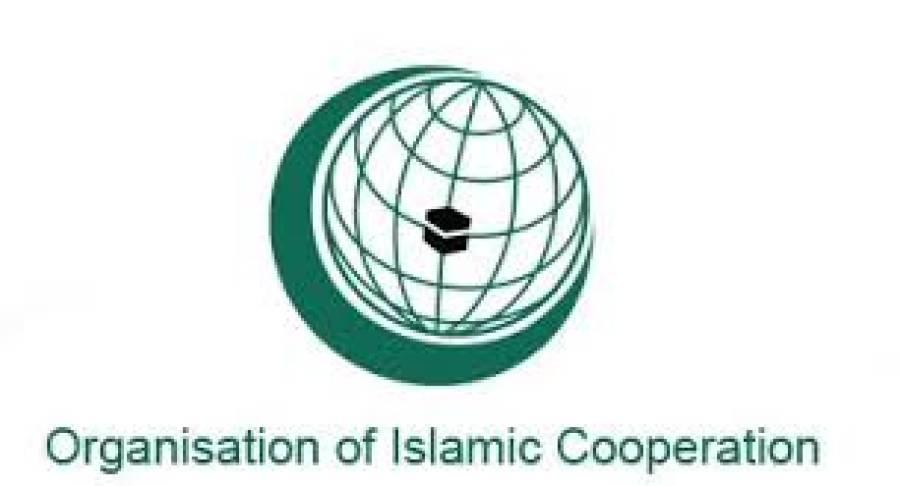 نیو یارک میں او آئی سی رکن ممالک کے سفیروں کا ہنگامی اجلاس ، اسرائیلی جارحیت کی مذمت