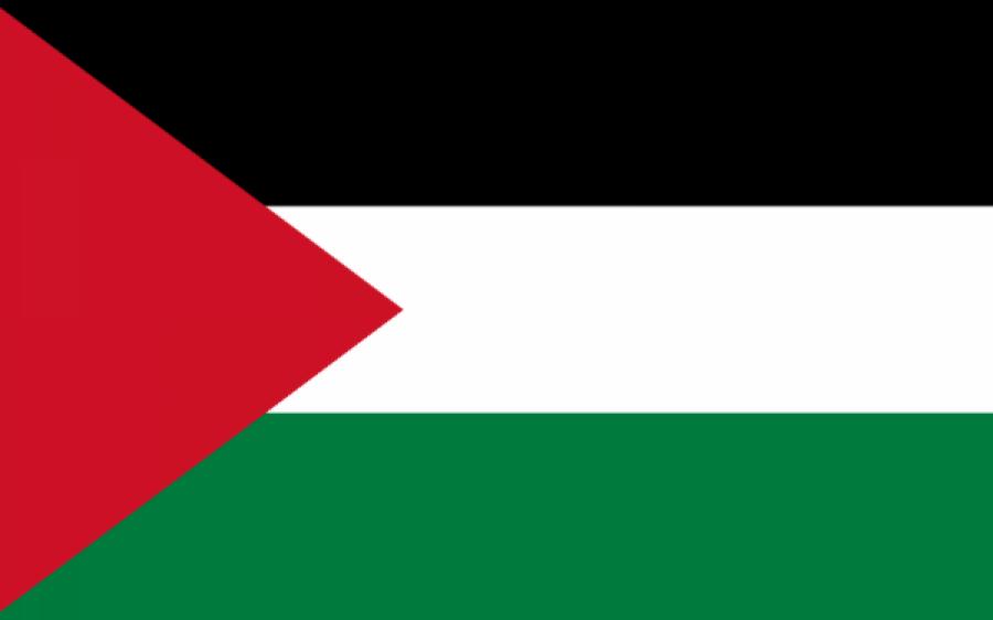 پاکستانی نژاد برطانوی باکسر عامر خان نے اپنے گھر پر فلسطینی پرچم لگالیا