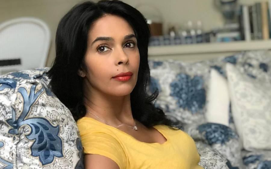 مجھے اب بھی ماضی کی طرح بھاری معاوضے کے عوض ۔۔۔بھارتی اداکارہ ملیکا شراوت کا ایسا انکشاف کہ ہر کسی کے گال شرم سے لال ہو جائیں