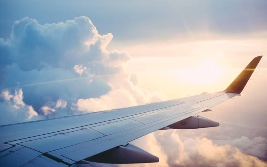 بھارت سے امریکہ جانیوالے طیارے کو ایک چمگادڑ نے لینڈنگ پر مجبور کردیا
