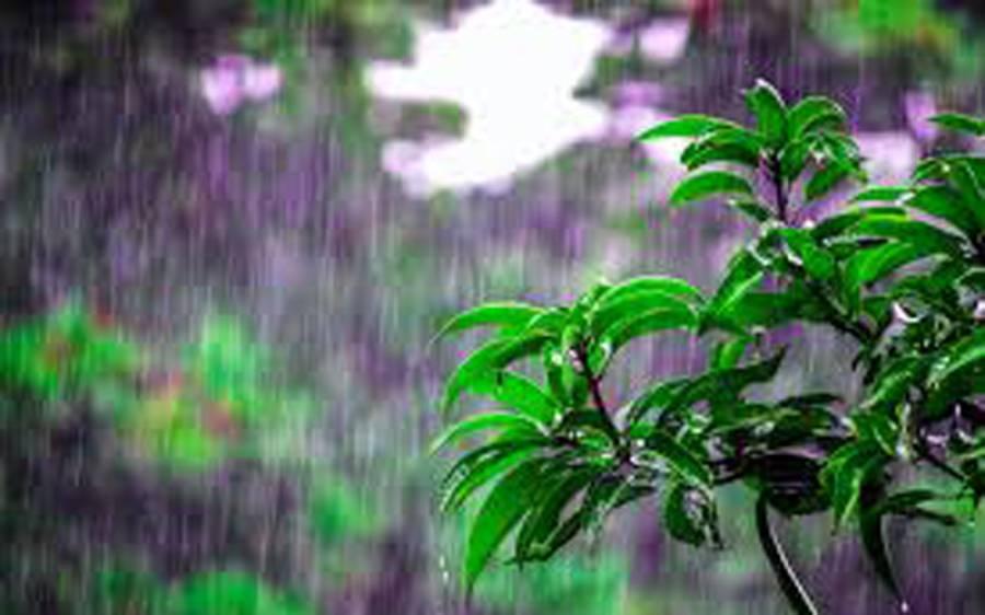 کشمیر اور اس سے ملحقہ پہاڑی علاقوں میں گرج چمک کے ساتھ بارش کا امکان