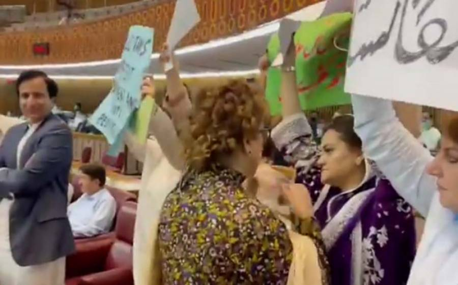 تحریک انصاف کی خواتین اراکین اسمبلی بجٹ اجلاس کے دوران لیگی خواتین سے احتجاجی پلے کارڈز چھیننے پہنچ گئیں