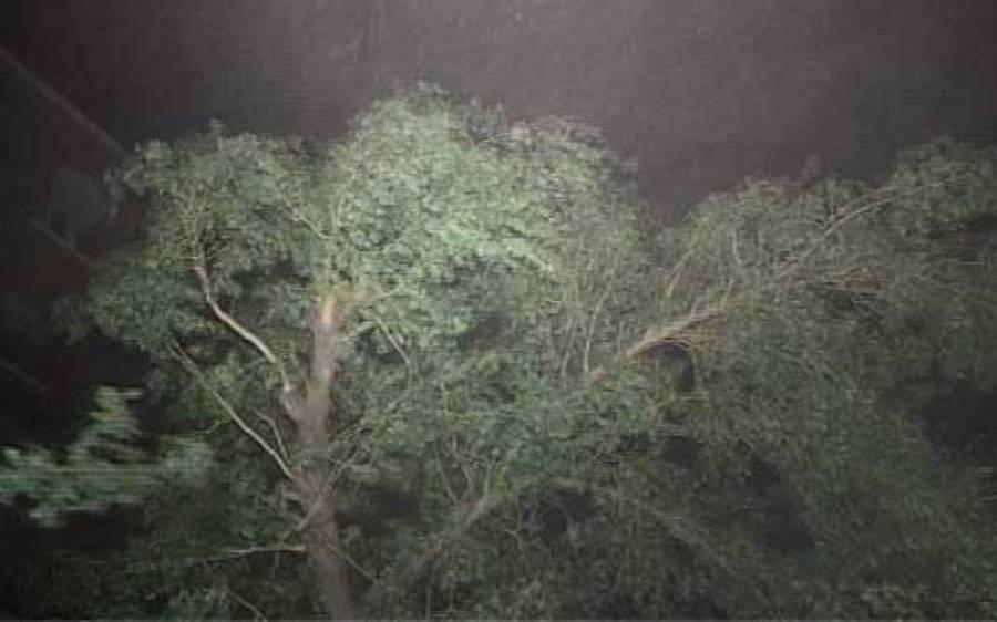 قدرت کو لاہوریوں پر رحم آ گیا ،شدید آندھی اور طوفان سے بجلی غائب ،موسم خوشگوار