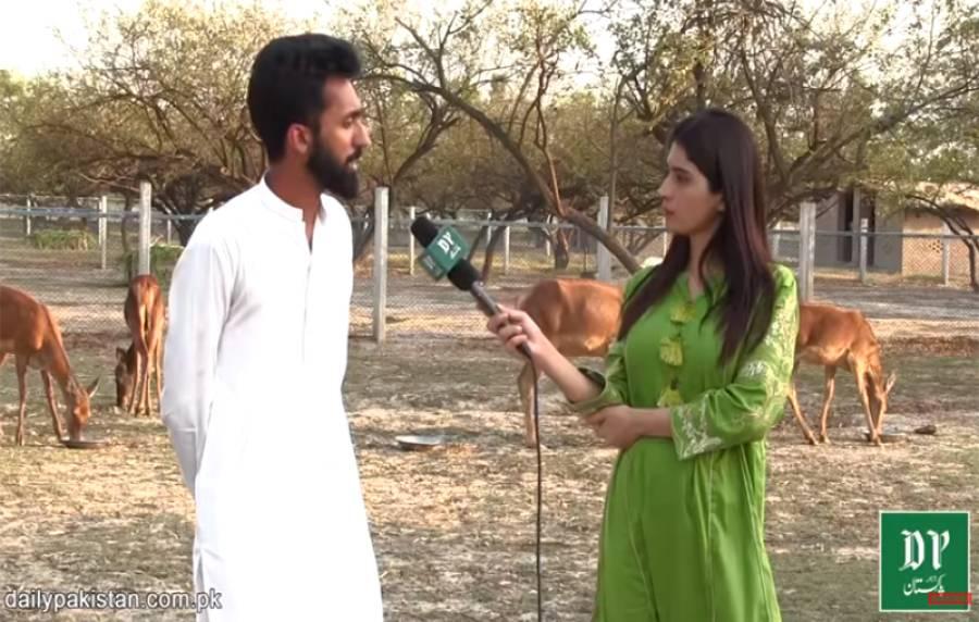 نایاب ترین ہرنوں کو ناپید ہونے سے بچانے کے لیے بنایا جانے والا پاکستانی فارم ہاؤس