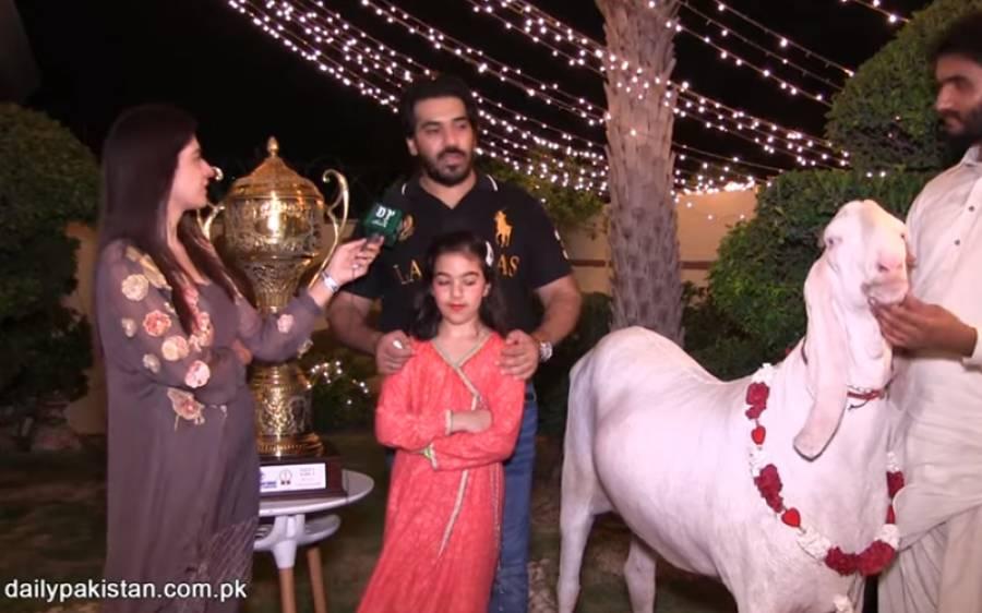 پاکستان کے سب سے خوبصورت بکرے کی ٹرافی جیتنے والا جانور، پیتا بھی صرف منرل واٹر ہے