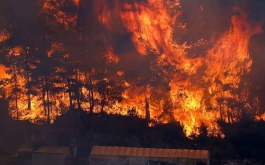 ترکی , 17 صوبوں کے جنگلات میں لگی خوفناک آگ پر قابو نہ پایا جا سکا ، بڑے پیمانے پر ریسکیو آپریشن جاری