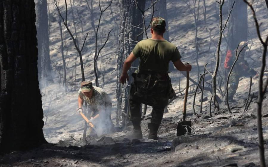 ترکی میں 98 مقامات پر لگی آگ میں سے اب تک کتنی جگہوں پر قابو پالیا گیا؟ تفصیلات سامنے آگئیں