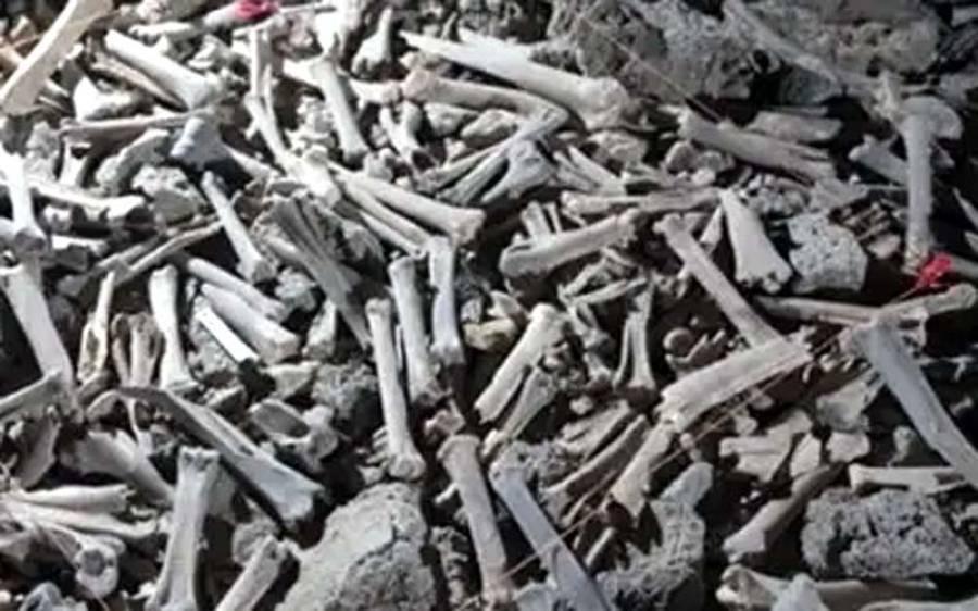سعودی عرب کے غار سے انسانوں اور جانوروں کی ہزاروں سال پرانی ہڈیاں دریافت