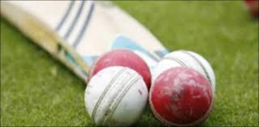 انٹرنیشنل بزنس پروفیشنل کونسل نے دوسرے سالانہ آزادی کپ کرکٹ ٹورنامنٹ کی تاریخ کا اعلان کردیا