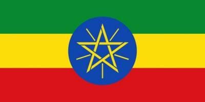 ایتھوپیا میں فائرنگ، ایک پاکستانی سمیت پانچ افراد جاں بحق