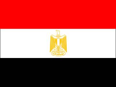 مصر کے صدارتی الیکشن ، مقابلہ دوبارہ ہوگا