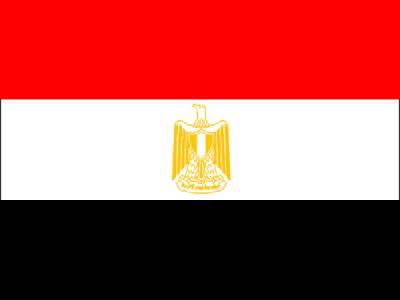 مصر کے ٹرین کو آگ لگ گئی