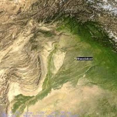 منڈی احمدآباد :زمیندار کے مویشوں کو زہر دےدیا گیا،دو ہلاک