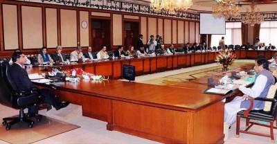 اتنا بجٹ نہیں جتنی کرپشن کا الزام لگا یا گیا،کابینہ نے ٹرانسپرنسی کو'آئینہ 'دکھا دیا