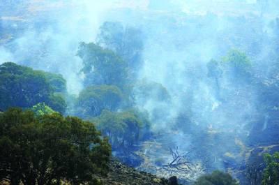 یاس:نیو ساﺅتھ ویلز میں پہاڑوں پر لگنے والی آگ پر تاحال جل رہی ہے
