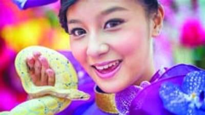 بیجنگ:چین میںقمری سال کے لئے منعقدہ تقریب میں ماڈل نے سانپ پکڑا ہو اہے' چینی بروج کے مطابق یہ برس سانپ کا ہوگا جبکہ گذشتہ سال اڑدھے کا سال تھا۔چین میں سانپ کی شہرت ، کچھ ملی جلی ہے۔ اسے ، حکمت و دانش مندی ، خوبصورتی اور ذہانت سے منسلک تصور کیا جاتا ہے جبکہ اسے فخر اور غصے کی علامت بھی سمجھا جاتا ہے