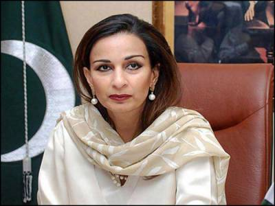 امریکہ میں پاکستانی سفارتخانے کے باہر ڈرون حملوں کیخلاف احتجاج ، دہشت گردی روکنے کے اوربھی طریقے ہیں : پاکستانی سفیر
