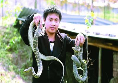 زی جیانگ: چینی کسان سانپوں کو پکڑے کھڑا ہے'