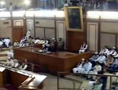 بی این پی کا بائیکاٹ، بلوچستان اسمبلی کے اراکین کا کئی زبانوں میں حلف، دھاندلی کے خلاف احتجاج
