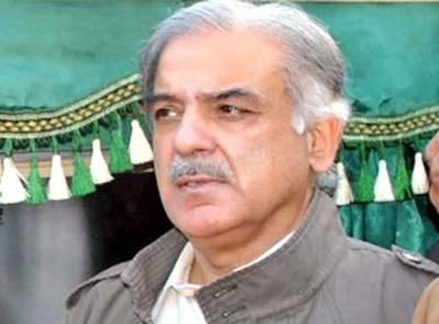 پاکستان کی بقاءدہشت گردی کے خاتمے میں ہے: شہباز شریف